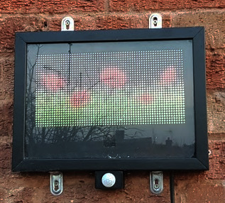 Raspberry Pi RGB LED Matrix Display - showing field of poppies